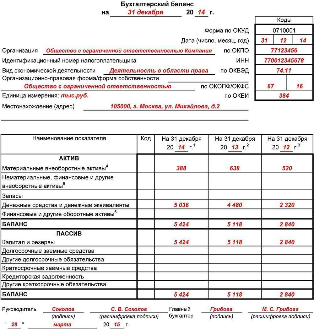 бланк бухотчетности за 2013 год